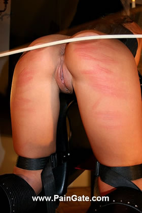 OBEY - OR YOU END UP IN THE DUNGEON UNDER 75 CANE STROKES!