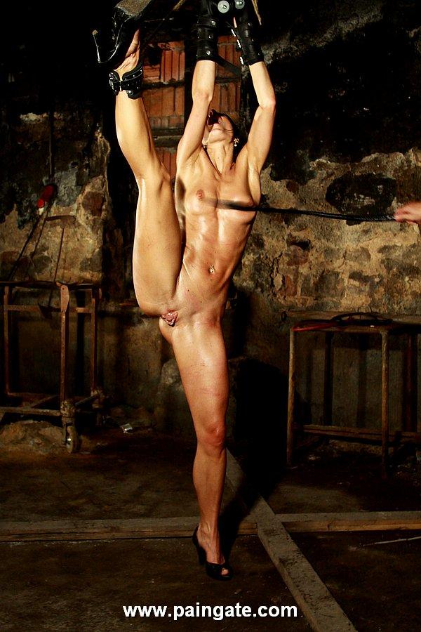 Hot milf pornstars naked