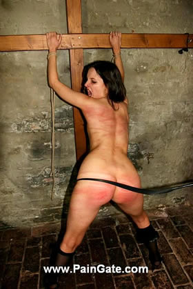 HARSH BACK AND ASS WHIPPING WITH DIFFERENT STINGING TOOLS!
