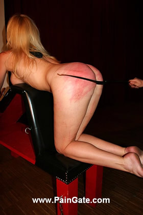 Thin riding crop, long sulky whip, singletail and bullwhip in brutal action